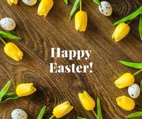 Polistuc - Pasqua